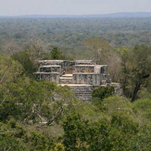 Calakmul Biosphere Preserve in Mexico