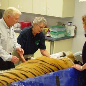 Dr. Peter Emily at Lake Superior Zoo
